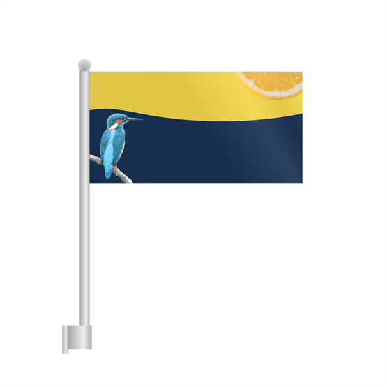 Wall Mounted Flags