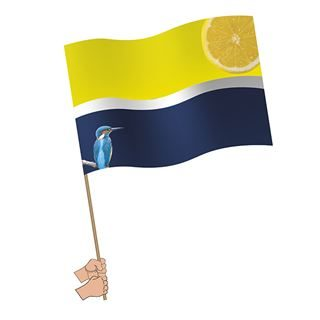 Large Handwaving Flags