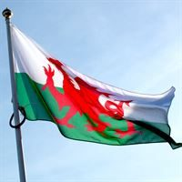 National Flags Welsh Flag