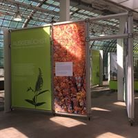 PVC Banners Exhibitions