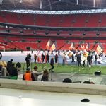 Wembly Pitch Bespoke Handwaving Flags
