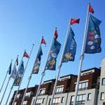 City Flags for City Dressing